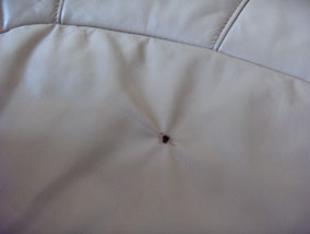 Repair Hole In Leather Sofa Hereo